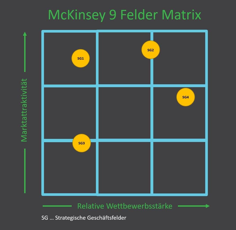 McKinsey Portfolioanalyse mit SGEs